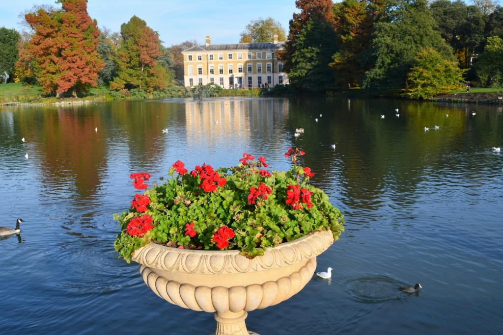 Kew Gardens - Mando Mendolicchio