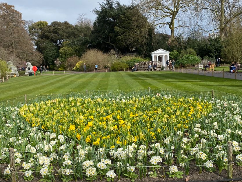 Kew Gardens in March - Jennifer Griffiths_web