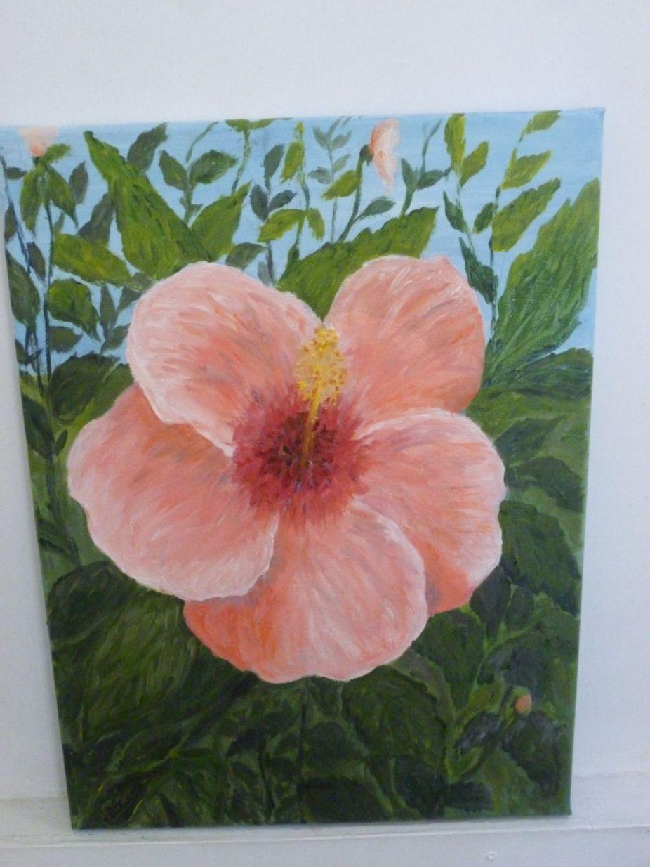 Diana Adams - Glorious Hibiscus