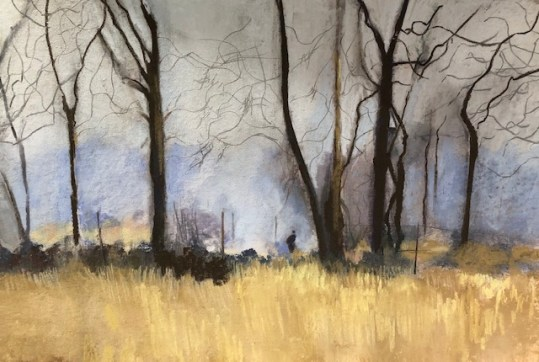 Bonfires in Richmond Park - Jill Spearman