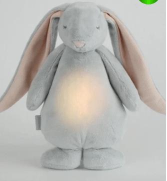 style my kid bunny