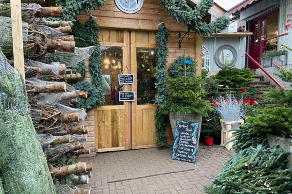 Wheelers-christmas-home
