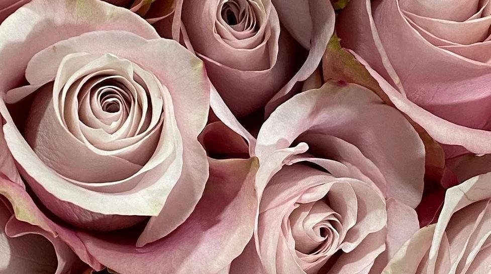 Bea's Flowers London 2