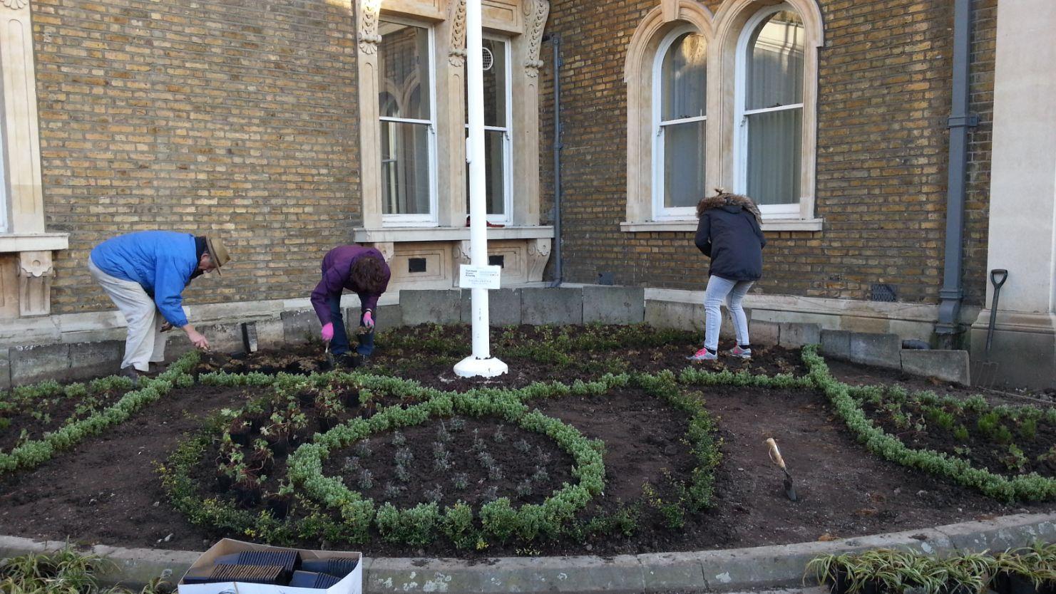 Abundance London Town Hall garden 1_web