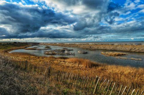 LS15 - Minnis Bay Nature Reserve - Landscapes & Seascapes