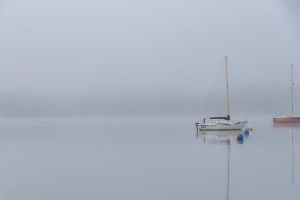 LS19 - Misty morning - Landscapes & Seascapes