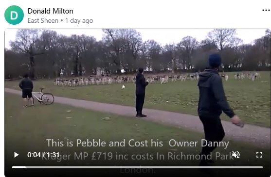 MP fined for dog chasing deer 1