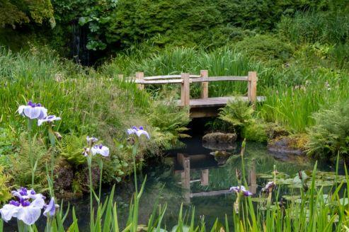 NW20 - Bridge over still water - Natural World