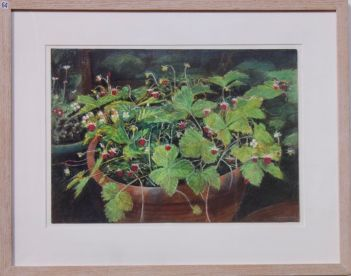 Pat Schaverien, Wild Strawberries - UID64