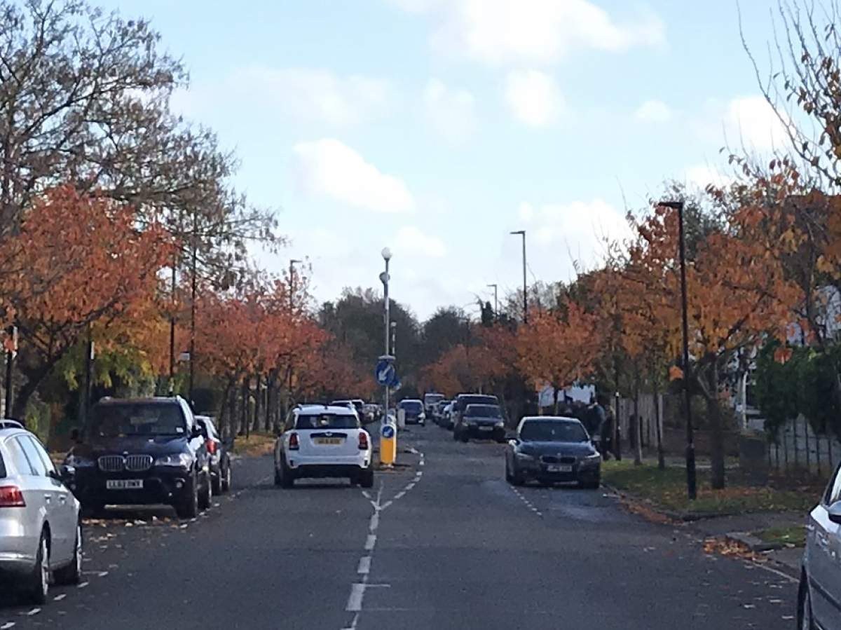 Staveley Rd in autumn__web