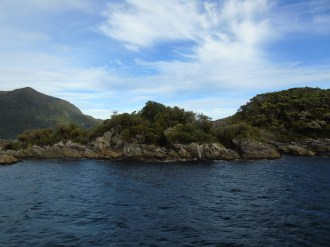 NZ - Doubtful sound (61)