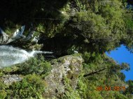 NZ - Lake Kaniere (8)