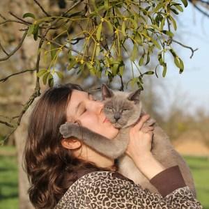 ペット 手触り 触感