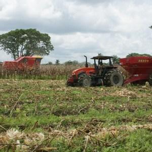 農業 生産性向上 自動化 機械化