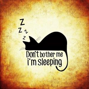睡眠 集中力 健康経営 生産性向上