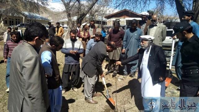 kaghlasht plantation chitral 6