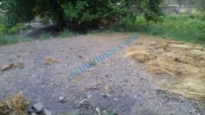 yarkhoon selab flood upper chitral scaled