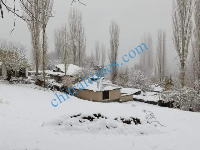 snow fall chitral5