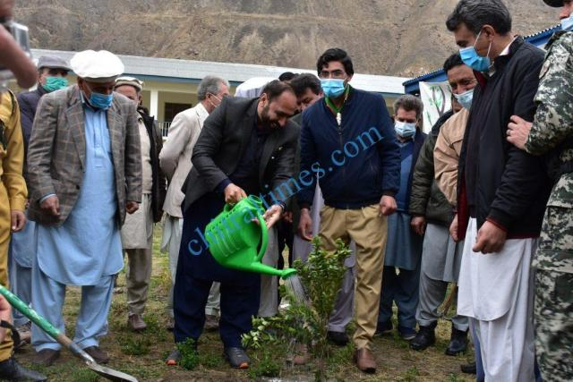 Zulfiqar ul Muluk DEO Upper Chitral planting a tree during the event