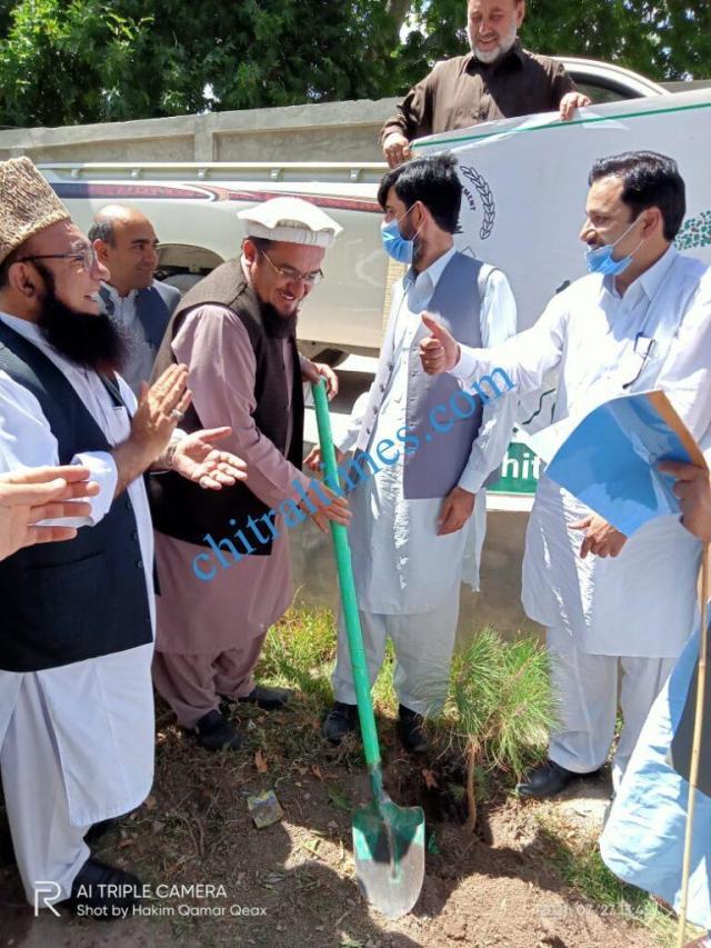 chitraltimes upper chitral plantation campaign hidayat mpa