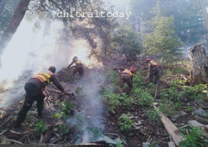 Forest fire in Birir still rages on