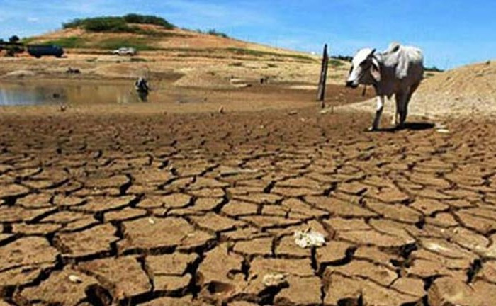 Germany to help mitigate climate change impact
