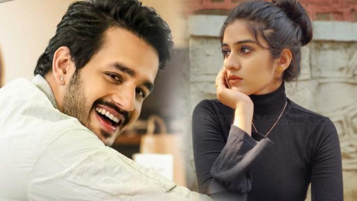 Mumbai Model Sakshi Vidya To Pair Up With Hero Akhil next