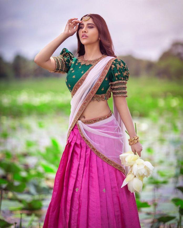 Nabha Natesh Latest Hot Saree Navel Photos