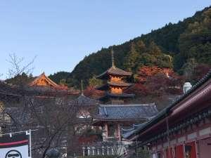 壺阪寺 全景