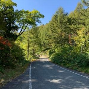 山の緑を抜ける奥利根ゆけむり街道