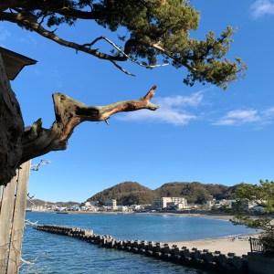 葉山・森戸神社本殿横の葉山の風景