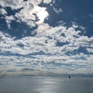 江島神社の展望台からの相模湾の眺め