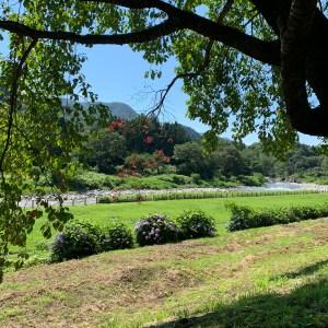 道の駅みなかみ水紀行館脇の利根川の風景を眺める