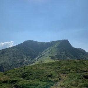 毛無峠側の印象的な緑の山
