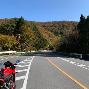 茶臼山高原道路の面の木峠にてwith CBR650R②
