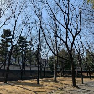 関東七名城「忍城」城内の立派な日本庭園