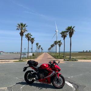マリンパーク御前崎の椰子の木ロードと風車とCBR650R