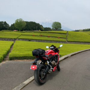 美しい茶畑の大淵笹場にて雲隠れの富士山とCBR650R