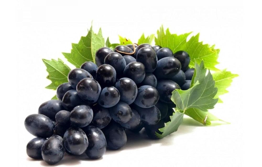 black grape seeds vitis vinifera — Chkhorotsku,Ge