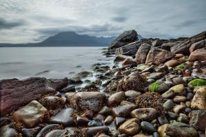Scottish Shoreline ALT