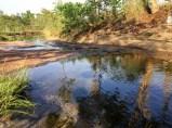 A tiny creek_10