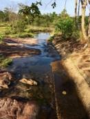 A tiny creek_6