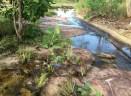A tiny creek_7
