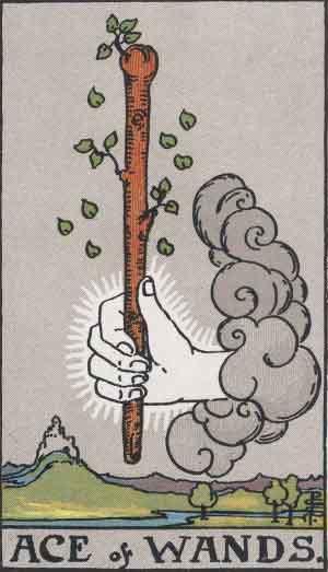 ace-of-wands-free-tarot-reading-p