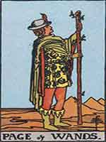 page-of-wands-free-tarot-reading-s