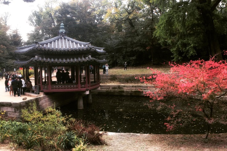 Best Time to Visit Korea - In Fall, Korea turns to a colorful canvas with yellow, red, gold and green.   www.chloestravelogue.com   #korea #fall #palace #maple