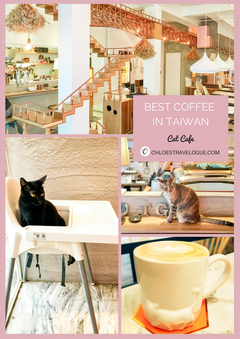 Best Coffee in Kaohsiung, Taiwan   3D Latte Art, Cat Cafe, Modern and Eclectic Cafes #Kaohsiung #Taiwan #Coffee #LatteArt #CatCafe