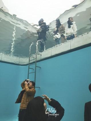 Kanazawa 21st Century Museum - Swimming Pool Portrait