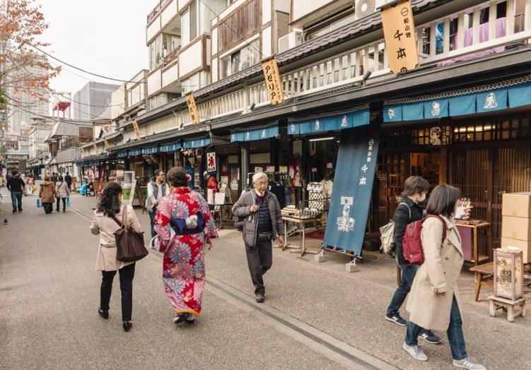 Things to Do in Asakusa   Tokyo Places to Visit: Hanayashiki - Japan's oldest amusement park   #Asakusa #Tokyo #ThingstoDoinAsakusa #Hanayashiki #Nakamise #AsakusaFood
