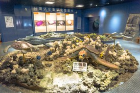 Wangan Green Turtle Conservation Center_